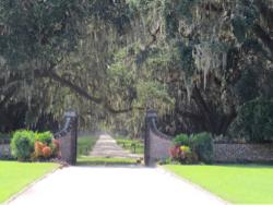 Oprijlaan van Boone Hall Plantation